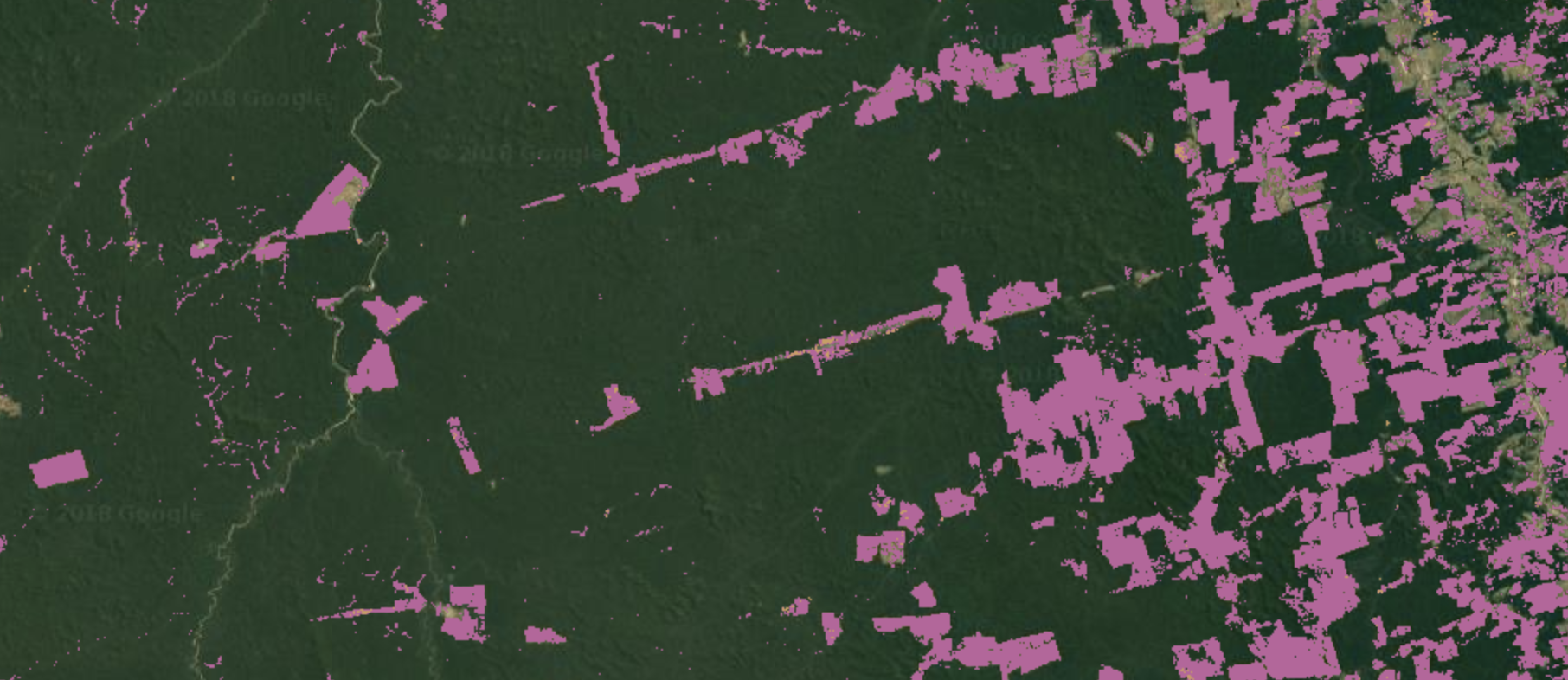 Amazon forest deforestation map