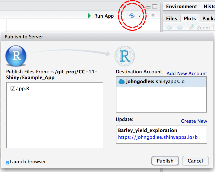 RStudio RS Connect screenshot